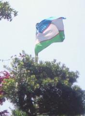 ウズベキスタン領事館.jpg